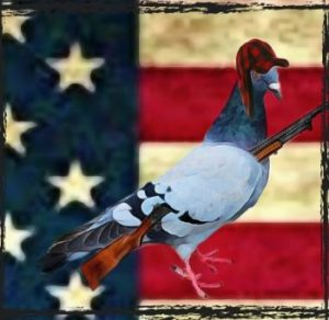 Pigeon on a flag with gun
