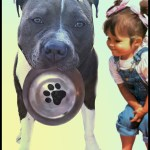 Pit bull with little girl