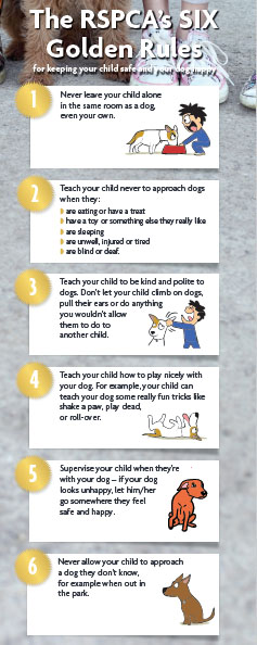 "The RSPCA's six ""golden rules"" for preventing dog attacks."