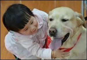(Animals Asia Foundation photo)