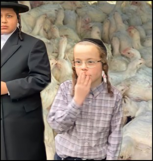 Two young Hassidic children with chickens
