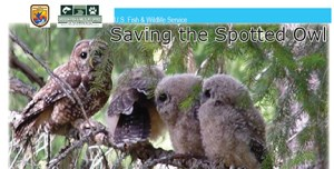 U.S. Fish & Wildlife Service publication defending plan to kill barred owls.
