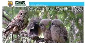U.S. Fish & Wildlife Service publication defending plan to kill barred owls.