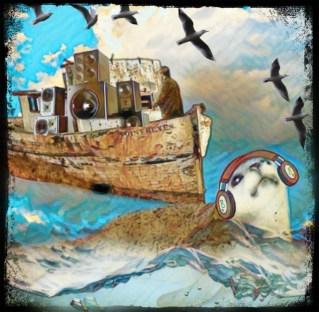 grey seal and fishing boat off Scotland