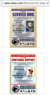 """Oklahoma law to curb bogus """"service dog"""" claims likely to"""
