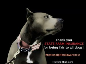 State Farm policies in truth oblige everyone with a dog to pay for pit bull excesses.