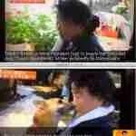 Post-Fukushima lawsuit may reshape the politics of animal welfare in Japan