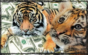 Tiger with cub and money