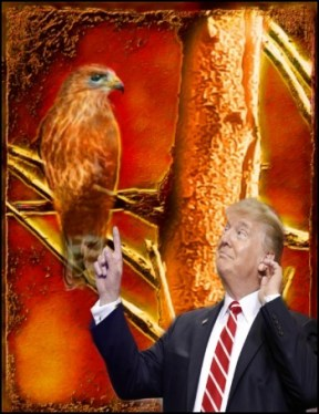 Trump pointing to hawk in fire