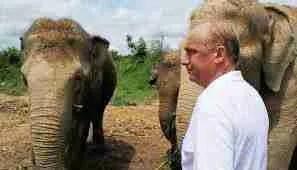Edwin Wiek & elephants.  (Chiangra La Times)