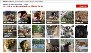 The Serenity Springs Wildlife Center has drawn mixed reviews on Yelp.