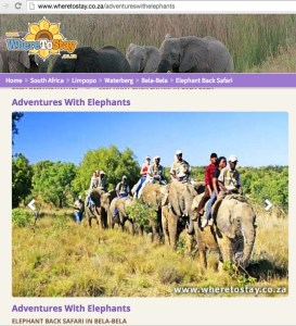 Zambian elephant tourism promotion