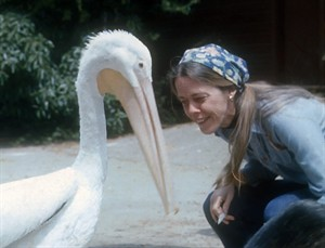 Alice Berkner & pelican.  (IBR photo)