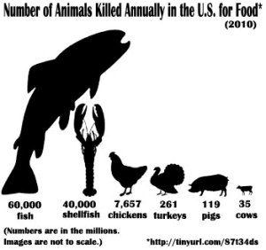 Animals killed for food