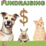 An Animal Shelter's Guide to Fundraising