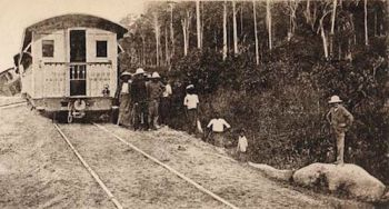 1894 elephant-train collision.