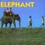 Elephant Family founder Mark Shand,  62