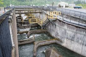 Bonneville dam fish ladder.  (Wikipedia)