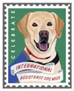 International Service Dog Week