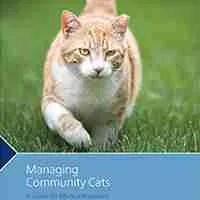 managing-community-cats