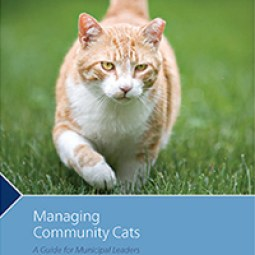 managing-community-cats