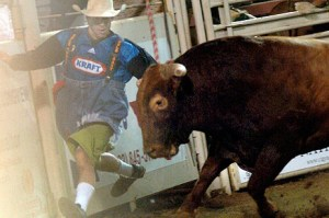 Michael Eugene Matt,  of Blanco,  Texas,  a four-time Professional Bull Riders world champion rodeo clown,  was in 2009 sentenced to serve five years in prison for cattle rustling.  (Showing Animals Respect & Kindness photo.)