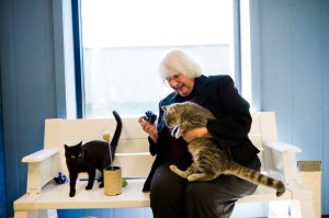 Mary Pat Boatfield with her cats.  (Central Missouri Humane Society photo)