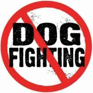 no_-dog_fighting