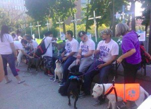 Pit bull advocates protest in front of Julie Kowal's memorial to dog attack victims in September 2014.