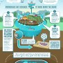 Plastic Not Fantastic Microbeads Are Poisoning Our
