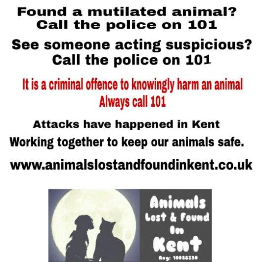 uk cat killer, operation takahe, kent cat killer, kent animal killer