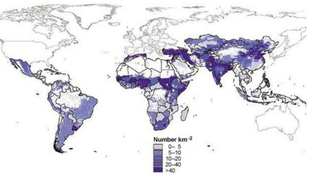 Density of Global Sheep & Goat Populations