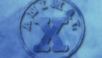 Animal X TV
