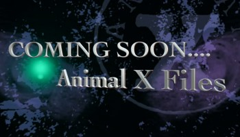 coming soon Animal X Files