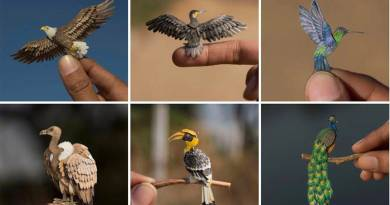 Miniature Birds Made Of Paper