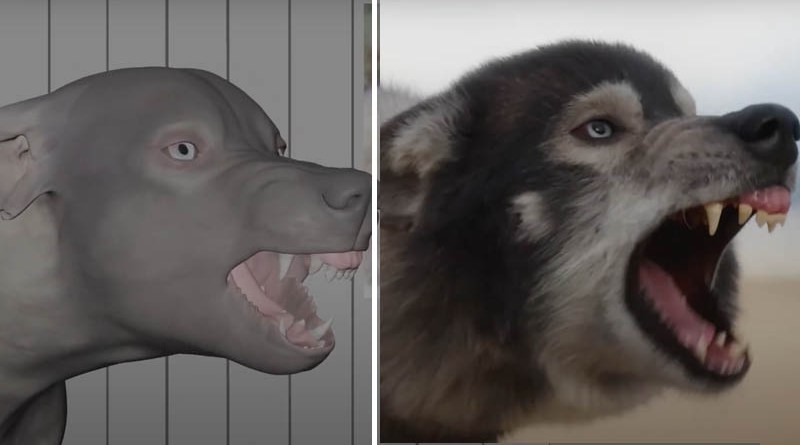 Disney's Togo Animation-VFX Breakdown