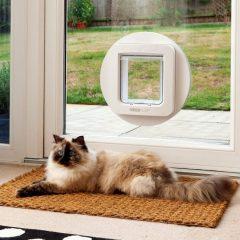 Révolutionnaire : Une chatière électronique qui identifie votre chat déjà pucé !
