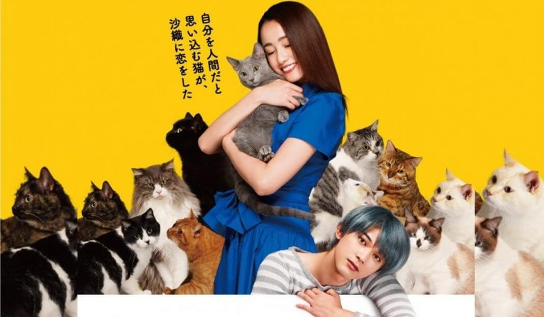 Holding The Cat in Arms Subtitle Indonesia