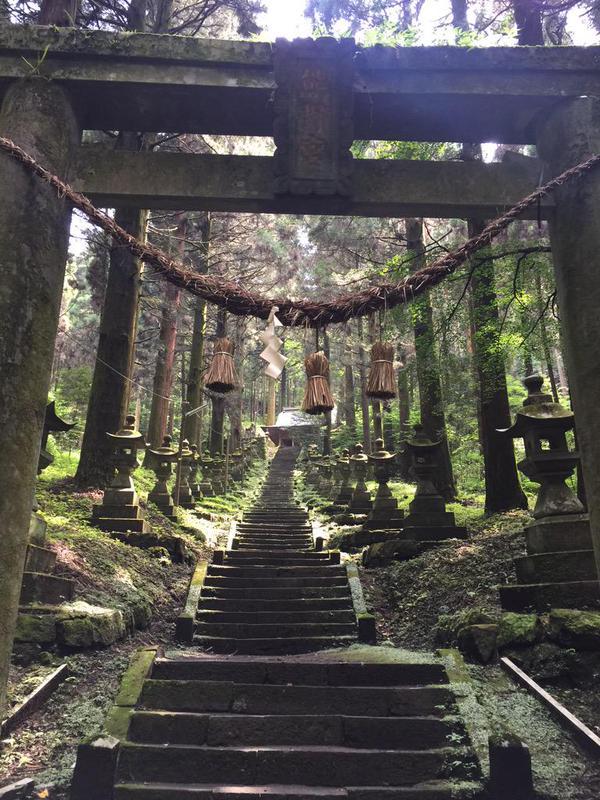 Il santuario boschivo di Hotarubi no Mori incanta Twitter  AnimeClick