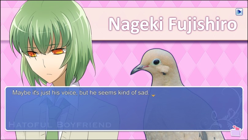 a profile image of shy bookworm bird Nageki from Hatoful Boyfriend