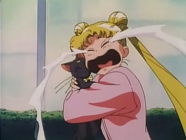 Usagi tearfully hugging Luna