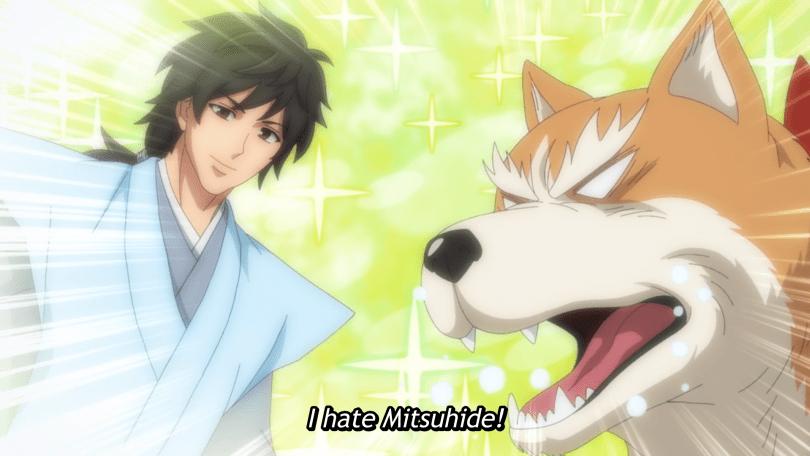 A shiba dog (Nobunaga) angrily thinks about a sparkling good looking man (Akechi Mitsuhide) Subtitle: I hate Mitsuhide!