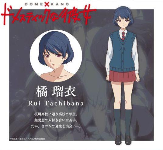 Domestic Girlfriend Character Visual - Rui Tachibana