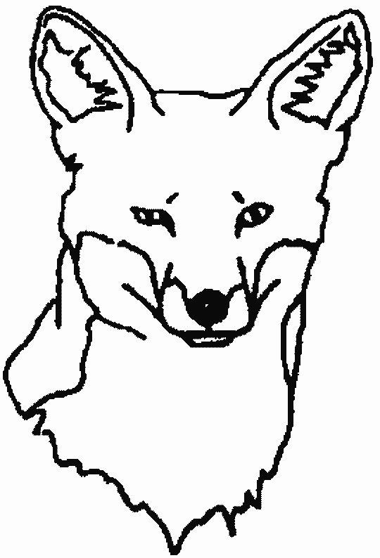 Fuchs Ausmalbilder & Malvorlagen Animierte Bilder Gifs