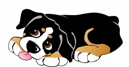 Berner Sennenhund Animierte Bilder Gifs Animationen