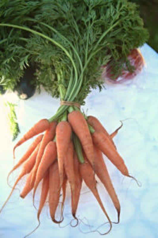 Baby carrots at the Cleveland Markets, Brisbane SE Australia