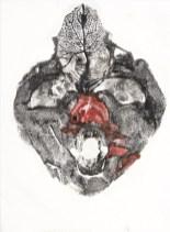 Fungus Ink, Krumlov