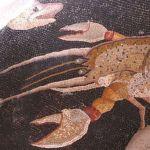 Il Mosaico dei Pesci a Palestrina