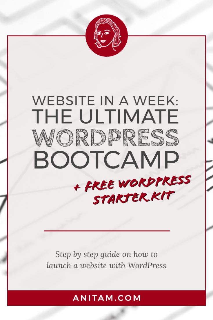 The Ultimate WordPress Bootcamp & Starter Kit | AnitaM
