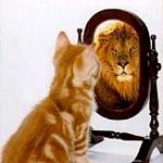 Alert op perceptie, verlangen en potentie